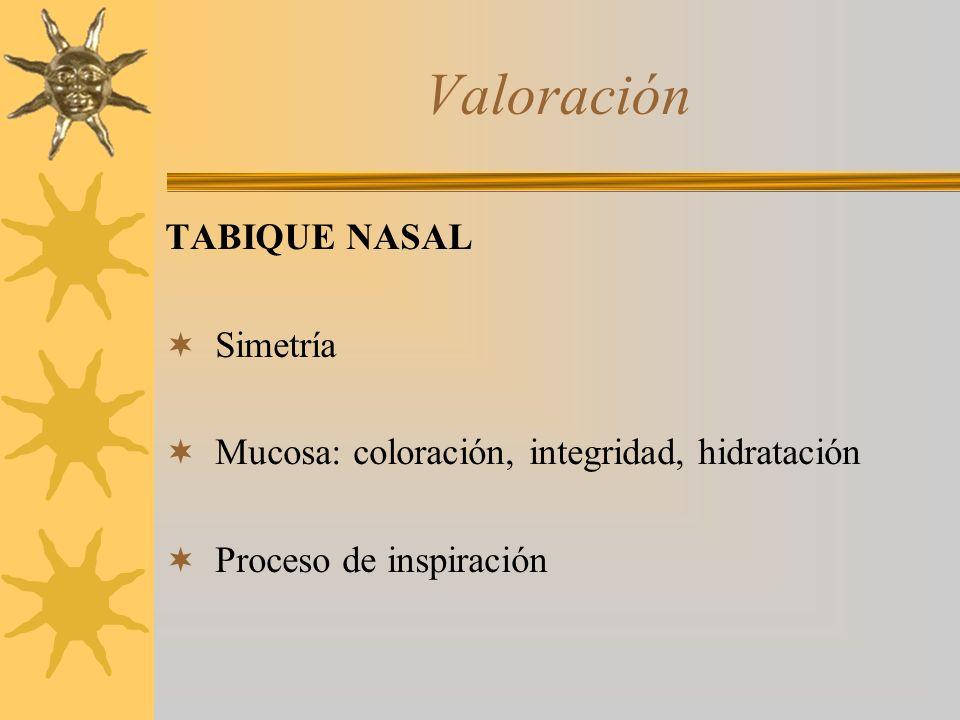Valoración TABIQUE NASAL Simetría Mucosa: coloración, integridad, hidratación Proceso de inspiración