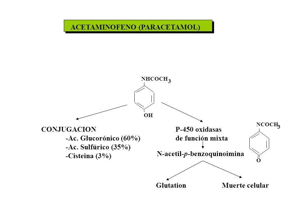 ACETAMINOFENO (PARACETAMOL) CONJUGACION -Ac. Glucorónico (60%) -Ac. Sulfúrico (35%) -Cisteina (3%) P-450 oxidasas de función mixta N-acetil-p-benzoqui