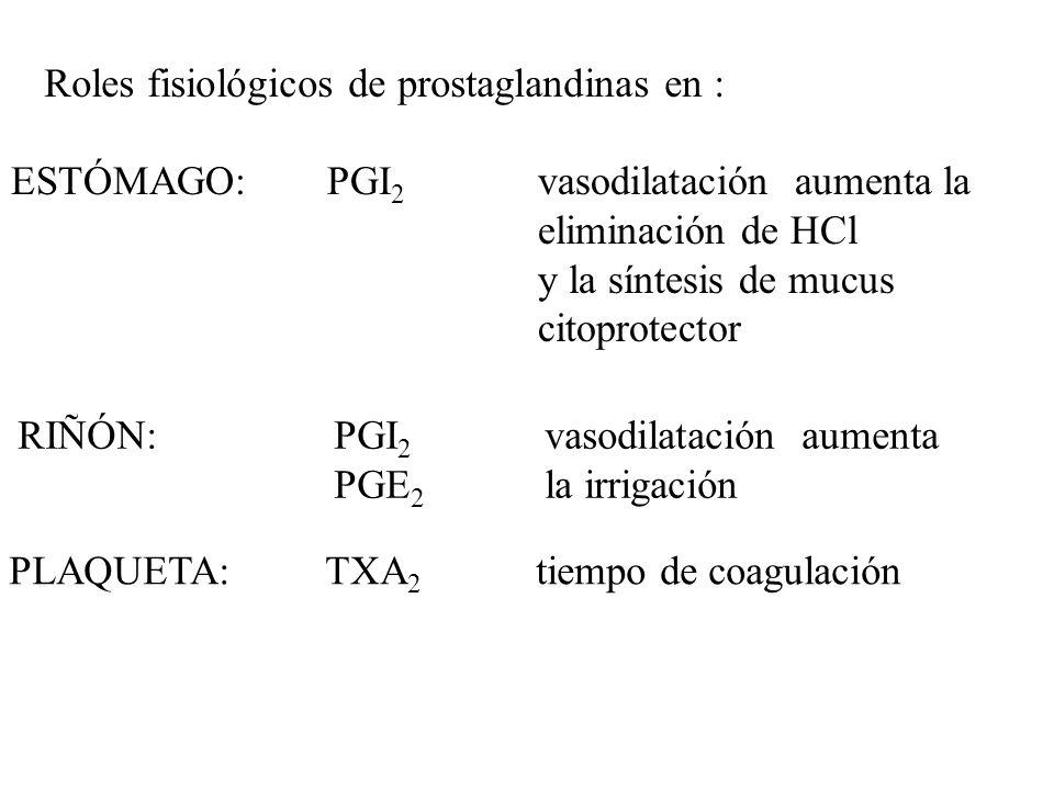 Roles fisiológicos de prostaglandinas en : ESTÓMAGO:PGI 2 vasodilatación aumenta la eliminación de HCl y la síntesis de mucus citoprotector RIÑÓN:PGI 2 vasodilatación aumenta PGE 2 la irrigación PLAQUETA:TXA 2 tiempo de coagulación