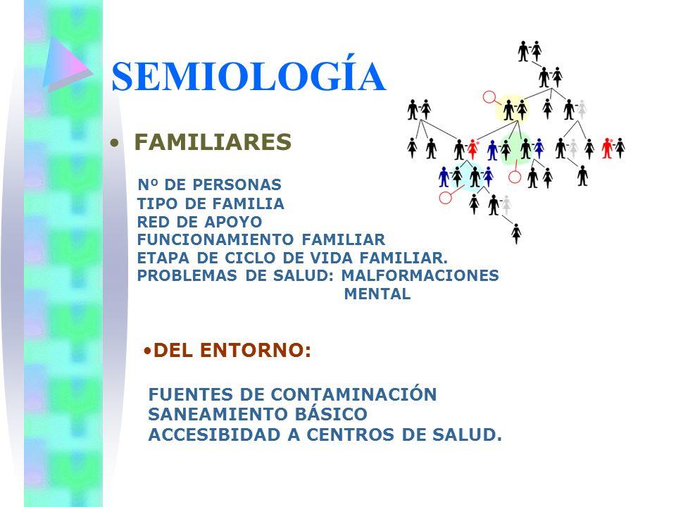 SEMIOLOGÍA FAMILIARES Nº DE PERSONAS TIPO DE FAMILIA RED DE APOYO FUNCIONAMIENTO FAMILIAR ETAPA DE CICLO DE VIDA FAMILIAR. PROBLEMAS DE SALUD: MALFORM