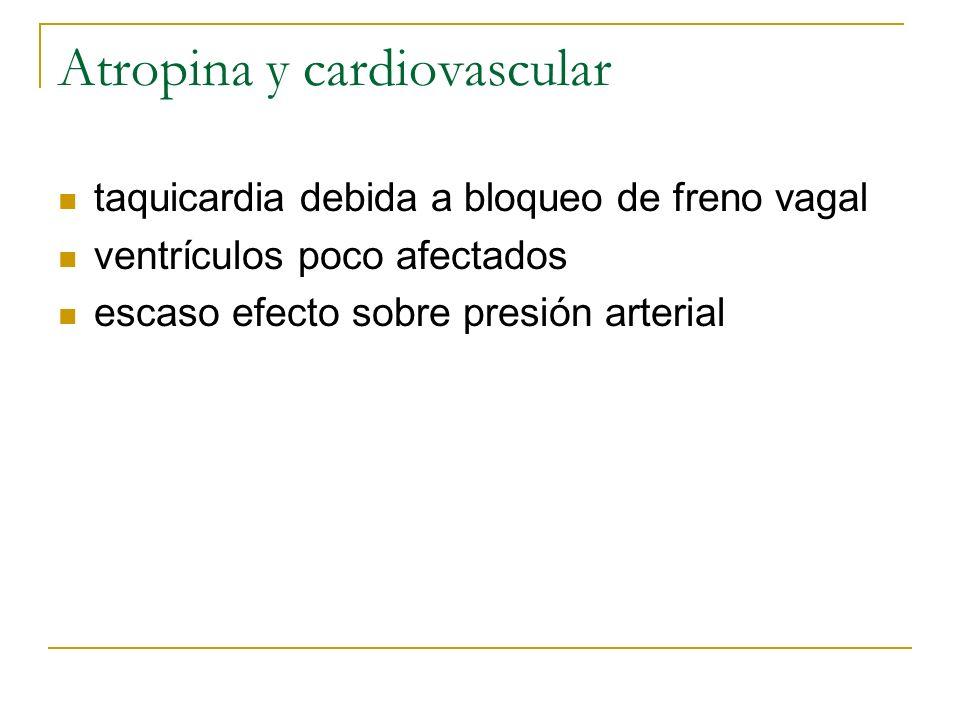 Atropina y cardiovascular taquicardia debida a bloqueo de freno vagal ventrículos poco afectados escaso efecto sobre presión arterial