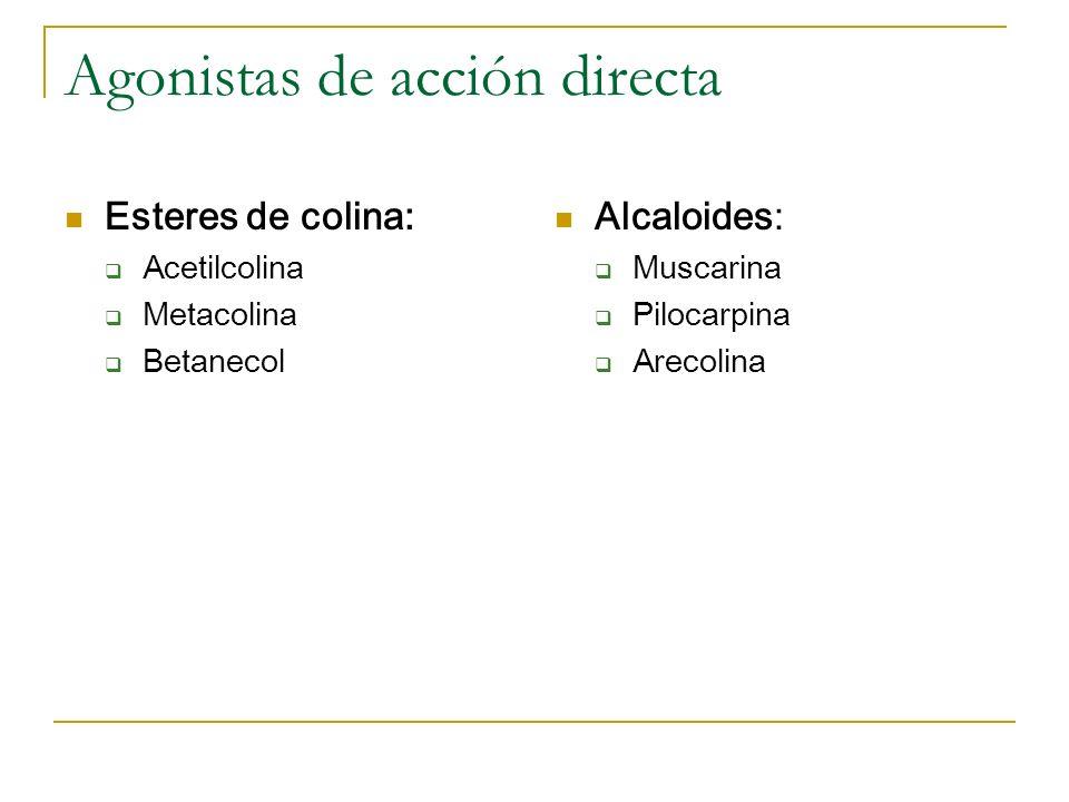 Agonistas de acción directa Esteres de colina: Acetilcolina Metacolina Betanecol Alcaloides: Muscarina Pilocarpina Arecolina