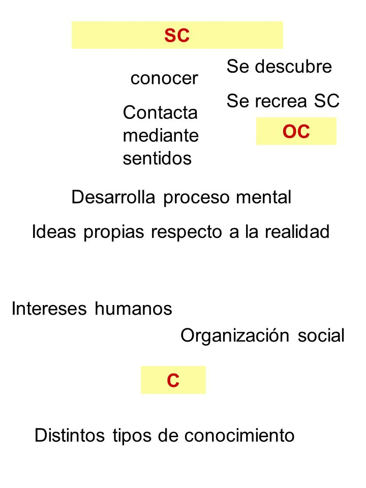 SC OC C conocer Contacta mediante sentidos Desarrolla proceso mental Ideas propias respecto a la realidad Se descubre Se recrea SC Intereses humanos O