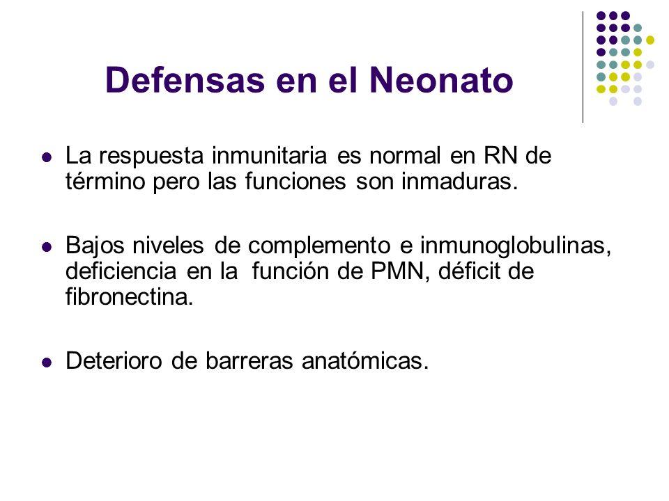Defensas en el Neonato La respuesta inmunitaria es normal en RN de término pero las funciones son inmaduras. Bajos niveles de complemento e inmunoglob