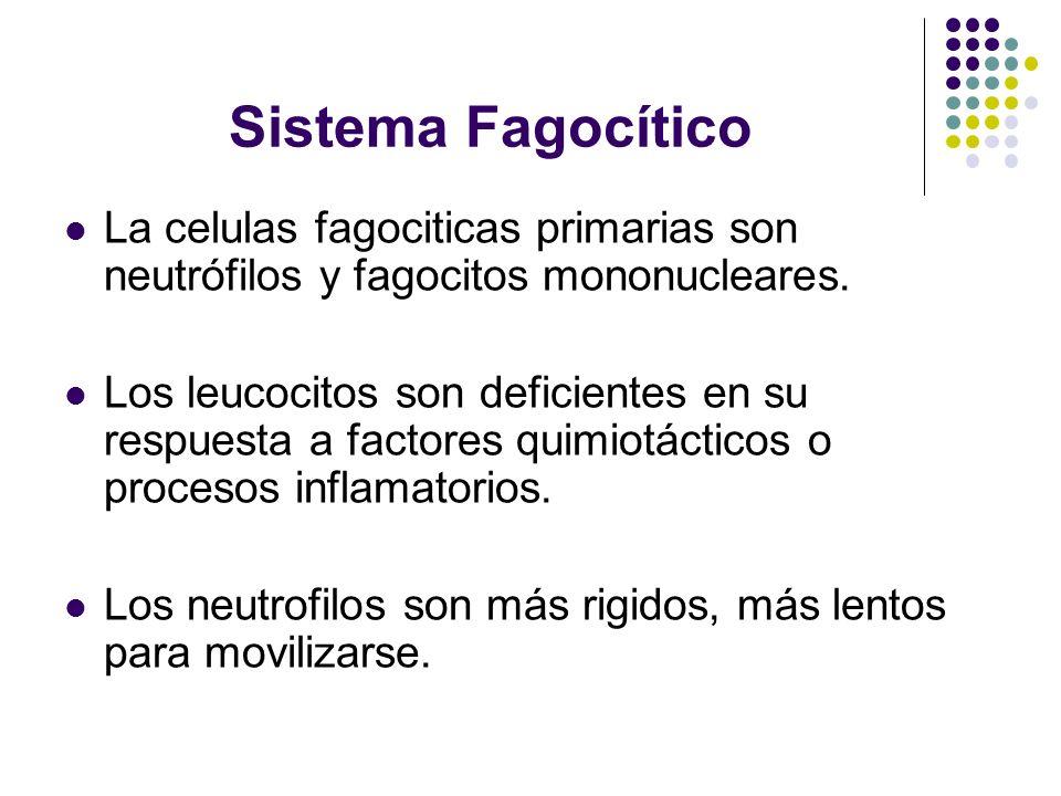 Sistema Fagocítico La celulas fagociticas primarias son neutrófilos y fagocitos mononucleares. Los leucocitos son deficientes en su respuesta a factor