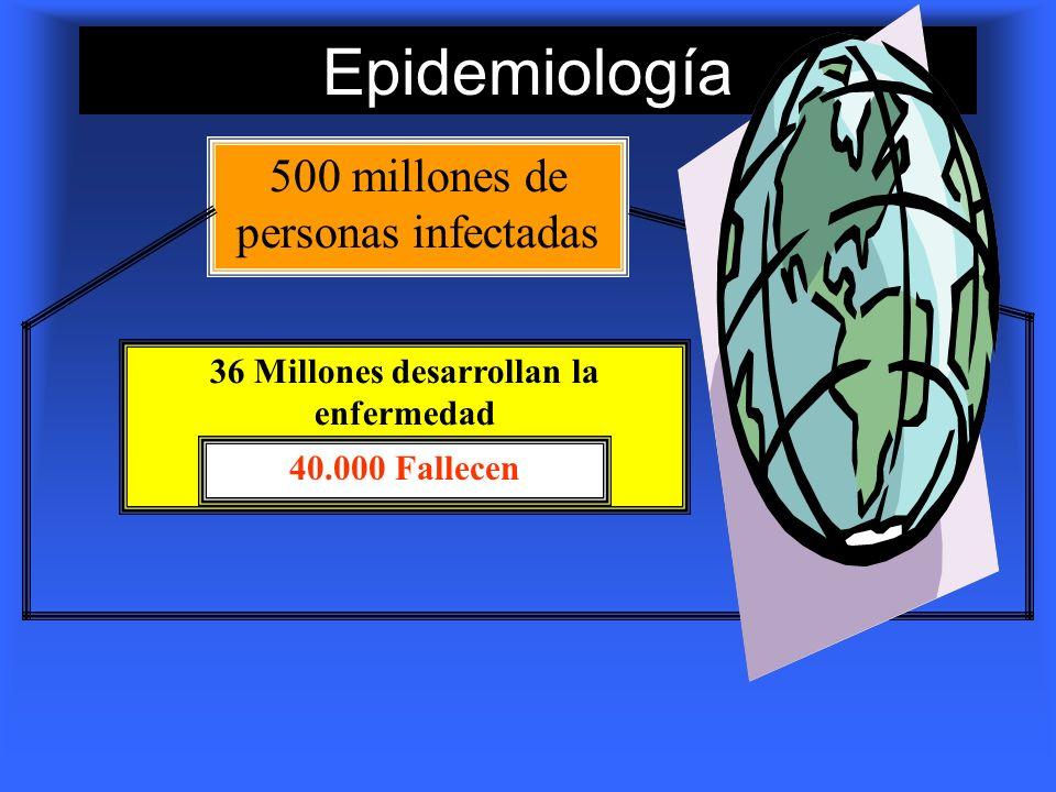 Epidemiología 500 millones de personas infectadas 36 Millones desarrollan la enfermedad 40.000 Fallecen
