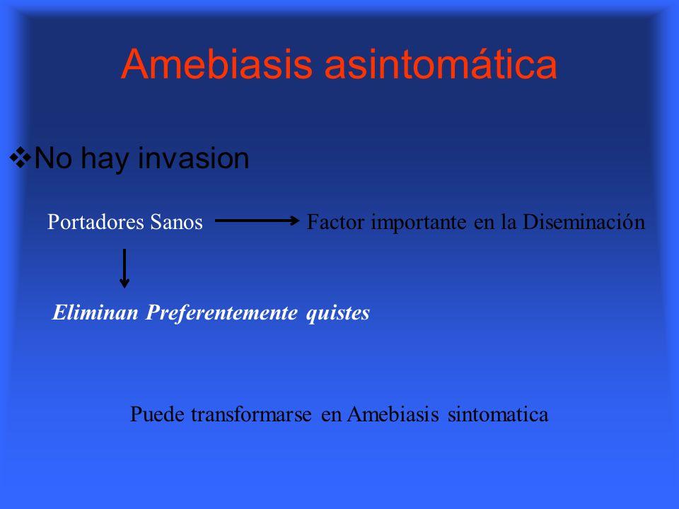 Amebiasis asintomática No hay invasion Portadores SanosFactor importante en la Diseminación Eliminan Preferentemente quistes Puede transformarse en Am