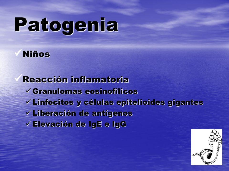 Patogenia Niños Niños Reacción inflamatoria Reacción inflamatoria Granulomas eosinofílicos Granulomas eosinofílicos Linfocitos y células epitelioides