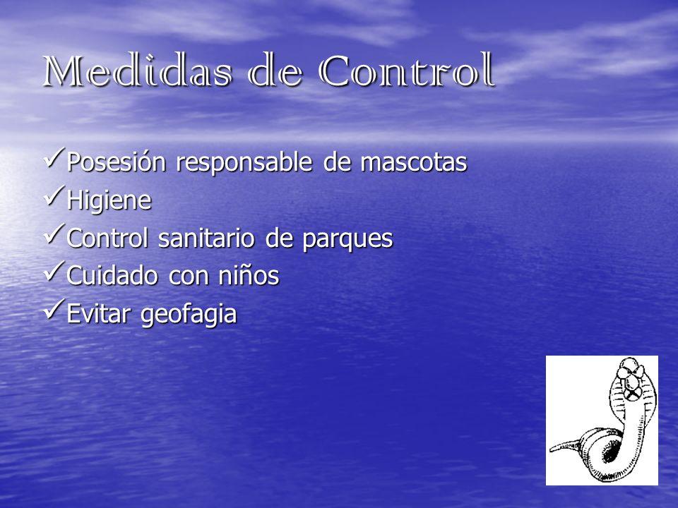 Medidas de Control Posesión responsable de mascotas Posesión responsable de mascotas Higiene Higiene Control sanitario de parques Control sanitario de