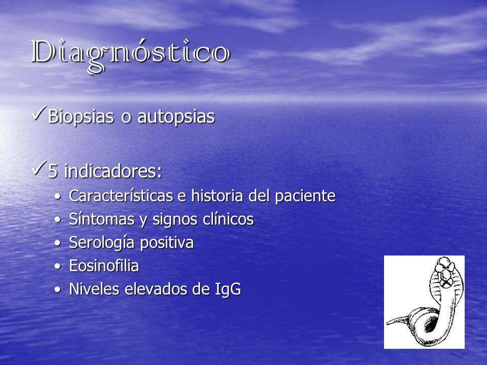 Diagnóstico Biopsias o autopsias Biopsias o autopsias 5 indicadores: 5 indicadores: Características e historia del pacienteCaracterísticas e historia