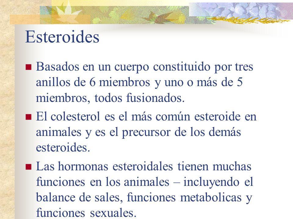 Esteroides Basados en un cuerpo constituido por tres anillos de 6 miembros y uno o más de 5 miembros, todos fusionados. El colesterol es el más común