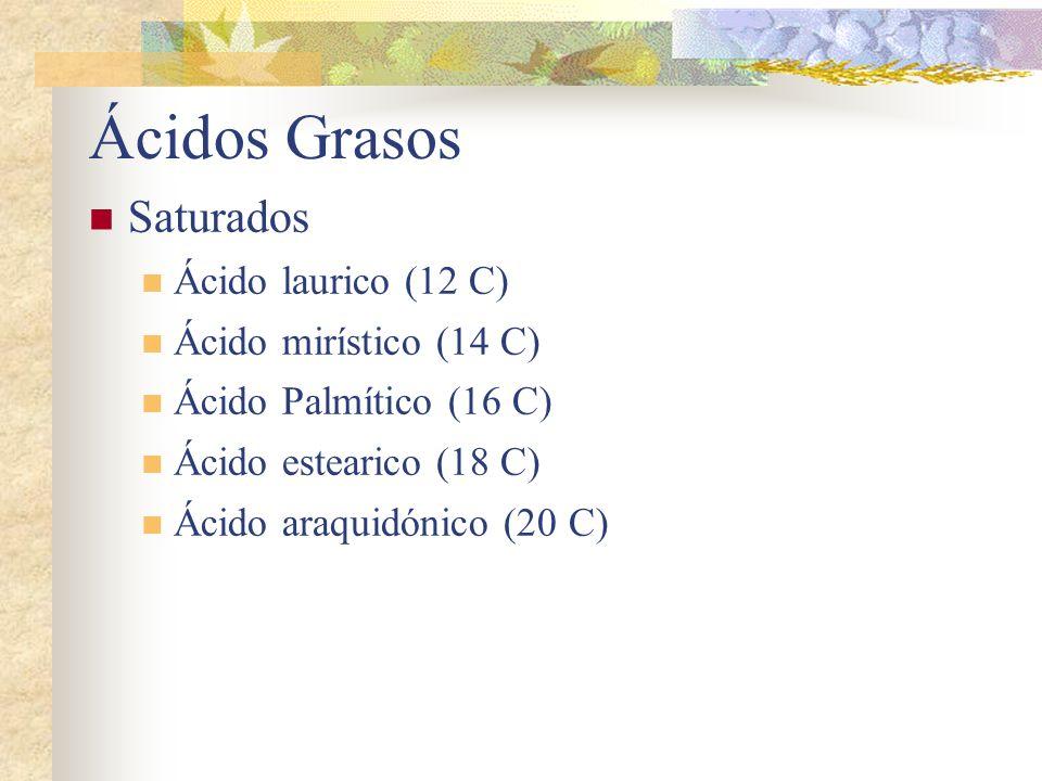 Ácidos Grasos Saturados Ácido laurico (12 C) Ácido mirístico (14 C) Ácido Palmítico (16 C) Ácido estearico (18 C) Ácido araquidónico (20 C)
