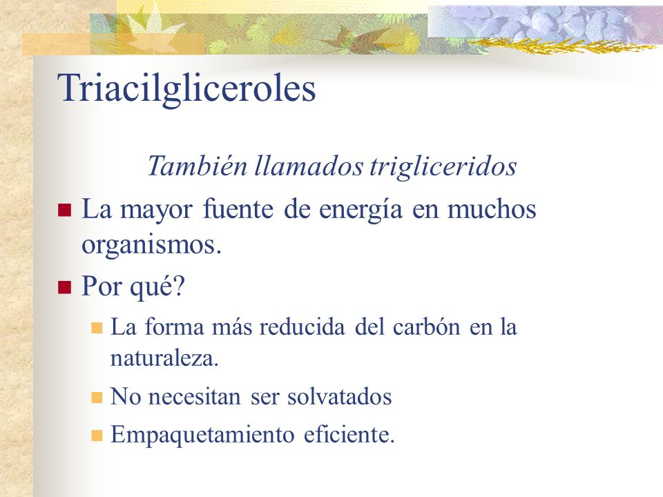 Triacilgliceroles También llamados trigliceridos La mayor fuente de energía en muchos organismos. Por qué? La forma más reducida del carbón en la natu