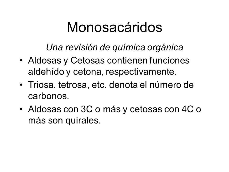 Monosacáridos Una revisión de química orgánica Aldosas y Cetosas contienen funciones aldehído y cetona, respectivamente. Triosa, tetrosa, etc. denota