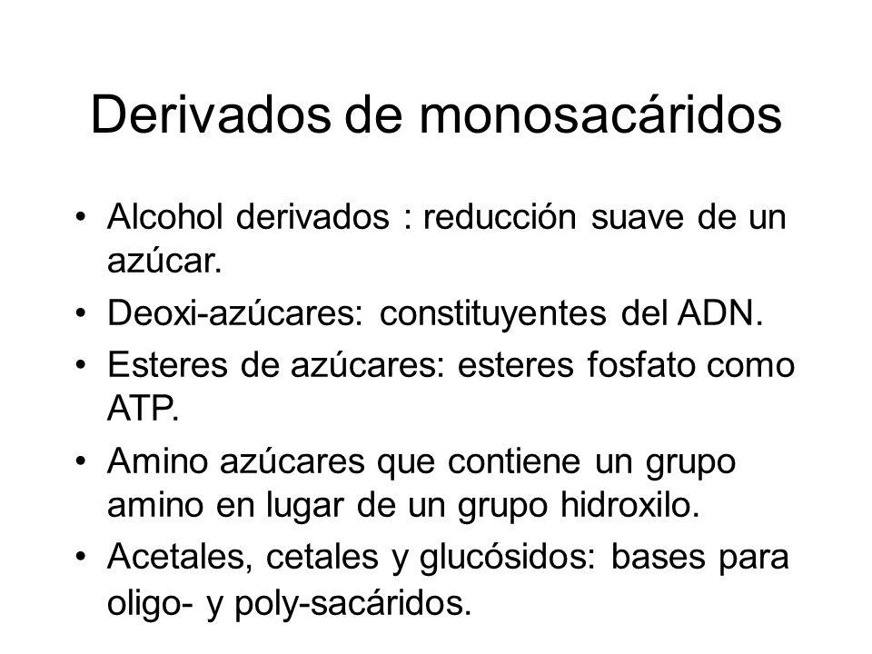 Derivados de monosacáridos Alcohol derivados : reducción suave de un azúcar. Deoxi-azúcares: constituyentes del ADN. Esteres de azúcares: esteres fosf