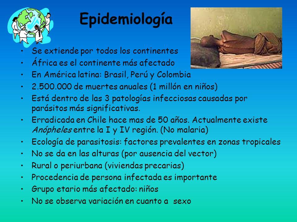 Epidemiología Se extiende por todos los continentes África es el continente más afectado En América latina: Brasil, Perú y Colombia 2.500.000 de muertes anuales (1 millón en niños) Está dentro de las 3 patologías infecciosas causadas por parásitos más significativas.