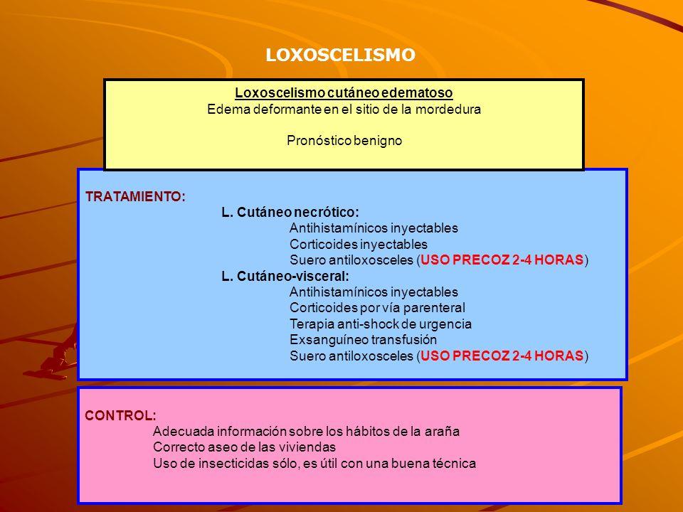 TRATAMIENTO: L. Cutáneo necrótico: Antihistamínicos inyectables Corticoides inyectables Suero antiloxosceles (USO PRECOZ 2-4 HORAS) L. Cutáneo-viscera