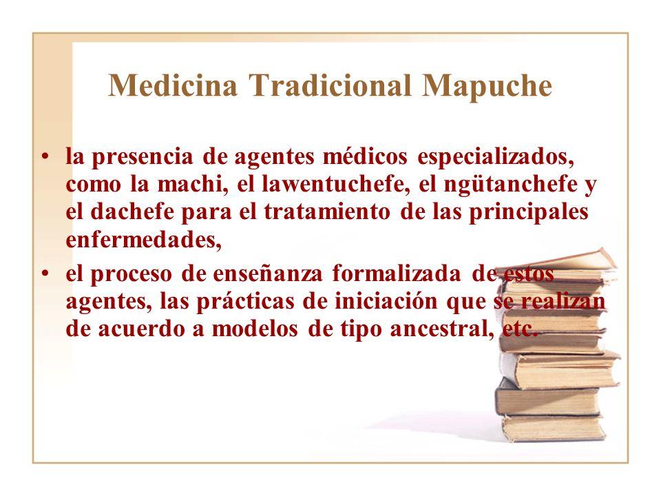 Medicina Tradicional Mapuche la presencia de agentes médicos especializados, como la machi, el lawentuchefe, el ngütanchefe y el dachefe para el trata