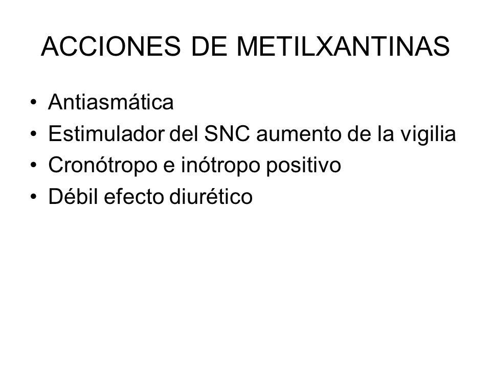 ACCIONES DE METILXANTINAS Antiasmática Estimulador del SNC aumento de la vigilia Cronótropo e inótropo positivo Débil efecto diurético
