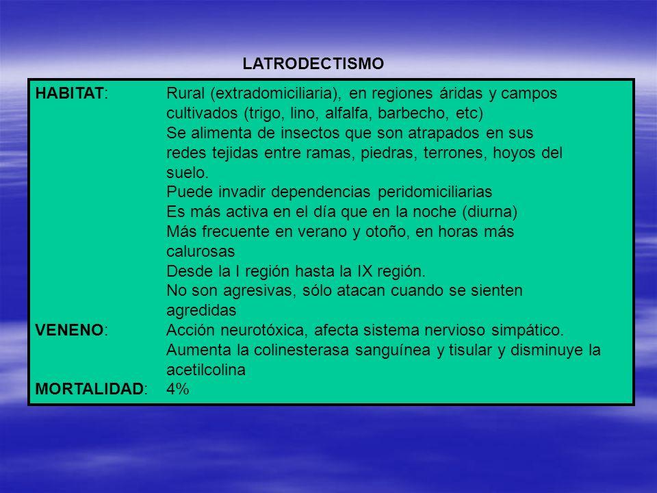 HABITAT:Rural (extradomiciliaria), en regiones áridas y campos cultivados (trigo, lino, alfalfa, barbecho, etc) Se alimenta de insectos que son atrapa
