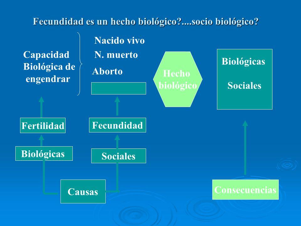 Fecundidad es un hecho biológico?....socio biológico? Capacidad Biológica de engendrar Nacido vivo N. muerto Aborto Fertilidad Fecundidad Biológicas S