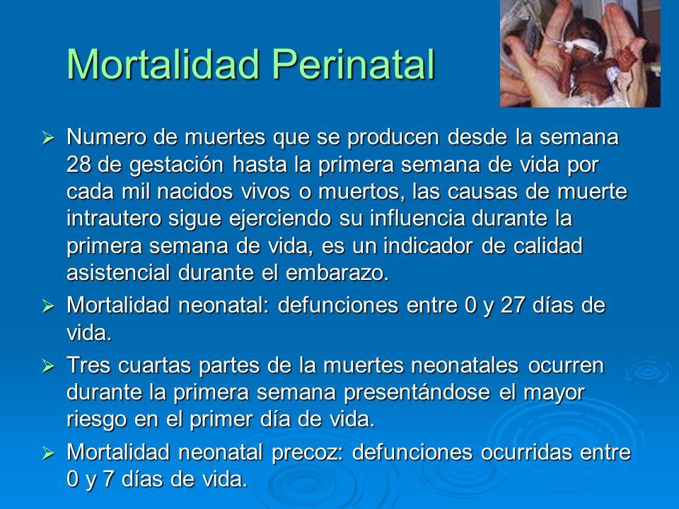 Mortalidad Perinatal Numero de muertes que se producen desde la semana 28 de gestación hasta la primera semana de vida por cada mil nacidos vivos o mu