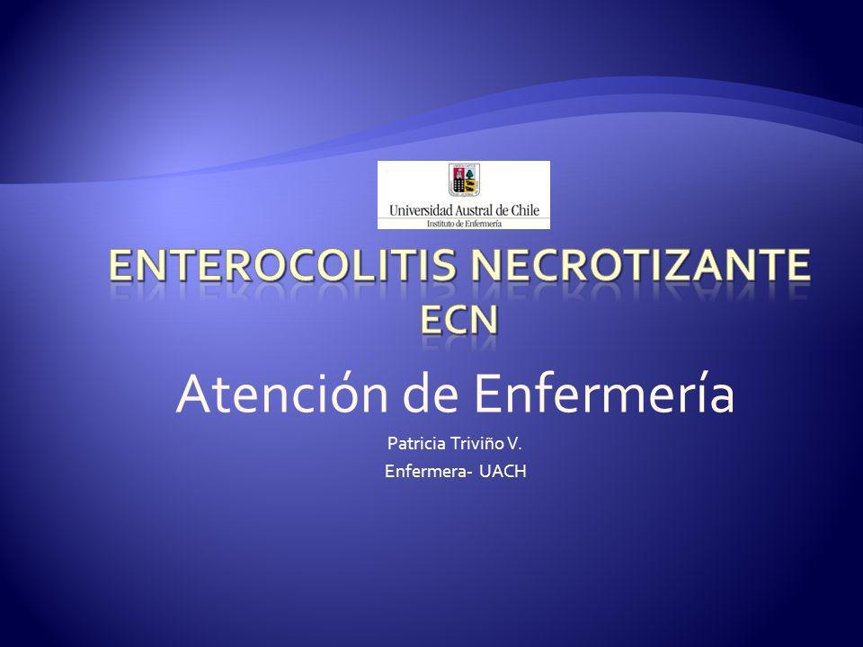 Atención de Enfermería Patricia Triviño V. Enfermera- UACH