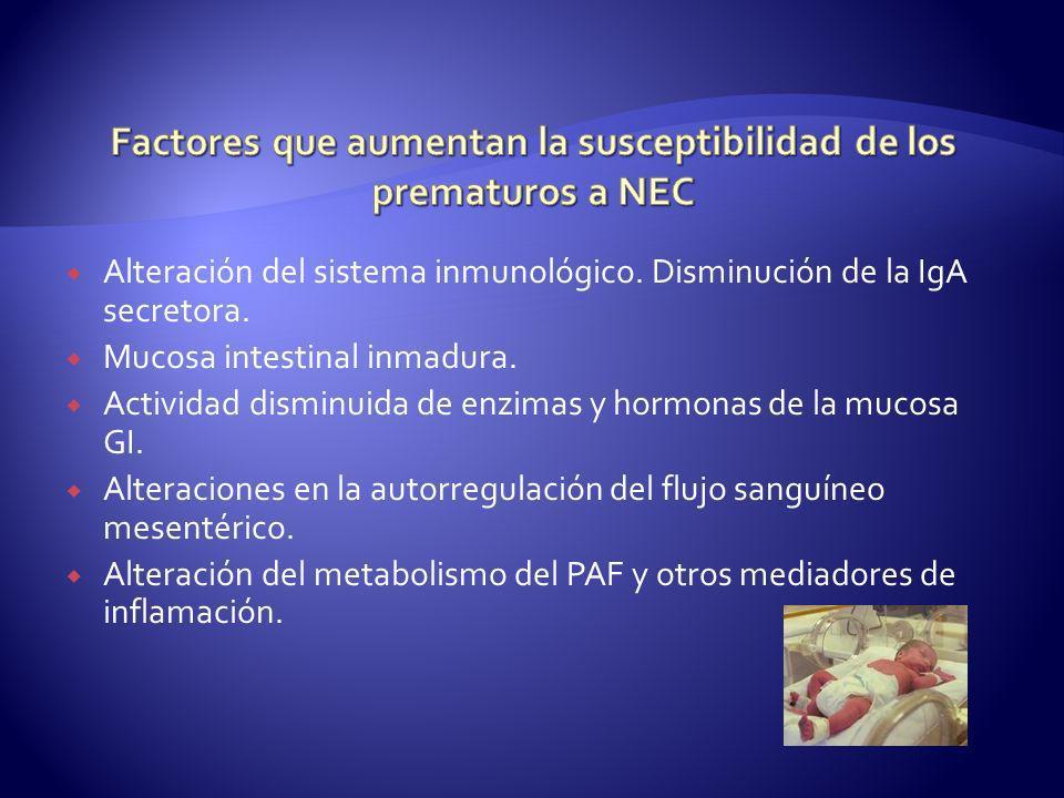 Alteración del sistema inmunológico. Disminución de la IgA secretora. Mucosa intestinal inmadura. Actividad disminuida de enzimas y hormonas de la muc