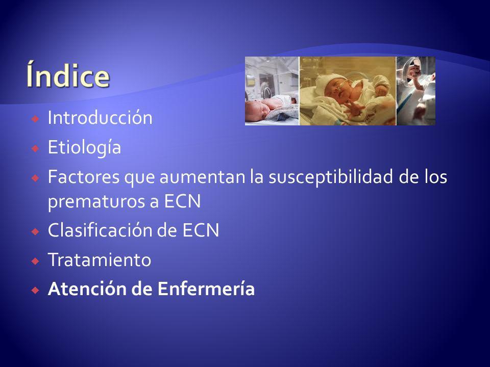 Introducción Etiología Factores que aumentan la susceptibilidad de los prematuros a ECN Clasificación de ECN Tratamiento Atención de Enfermería