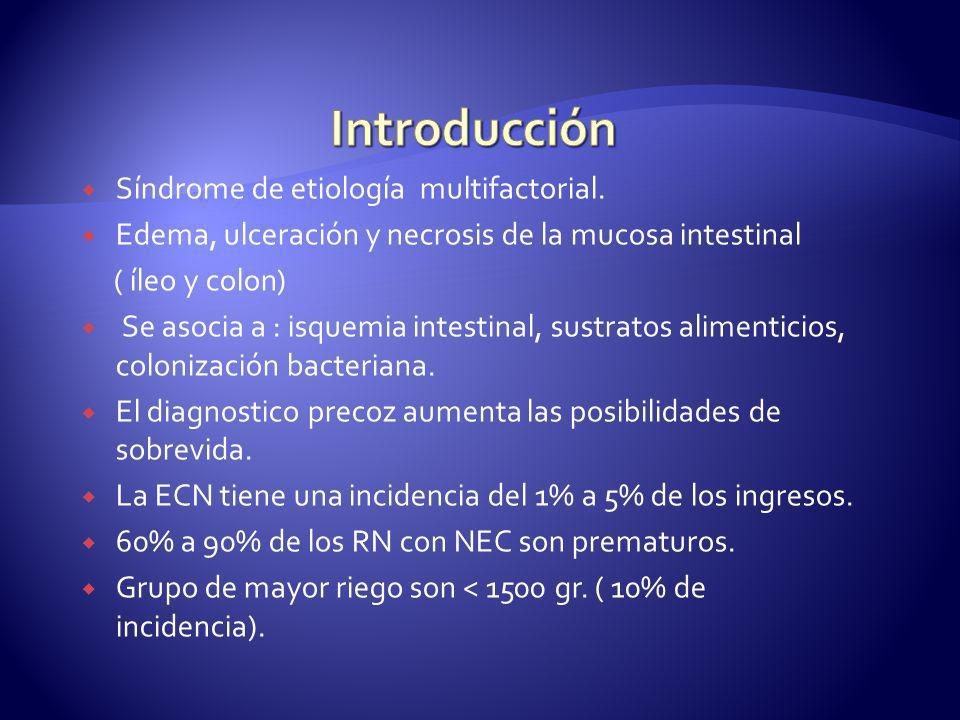 Síndrome de etiología multifactorial. Edema, ulceración y necrosis de la mucosa intestinal ( íleo y colon) Se asocia a : isquemia intestinal, sustrato