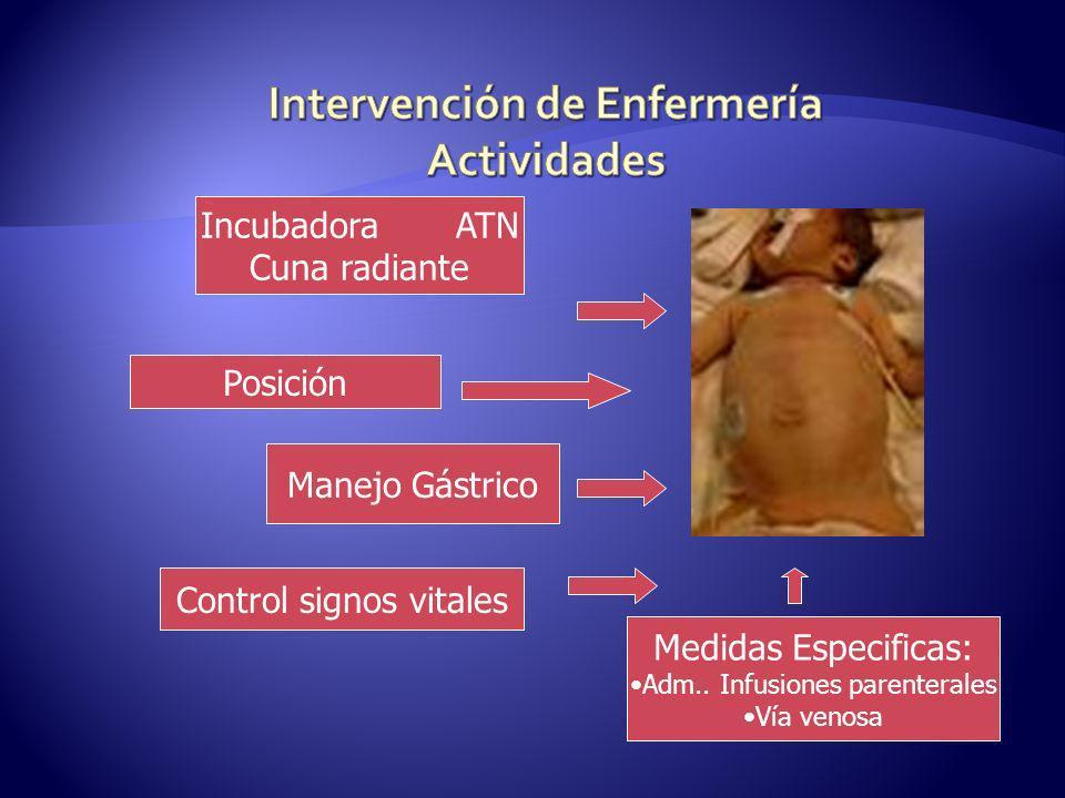 Incubadora ATN Cuna radiante Posición Manejo Gástrico Control signos vitales Medidas Especificas: Adm.. Infusiones parenterales Vía venosa