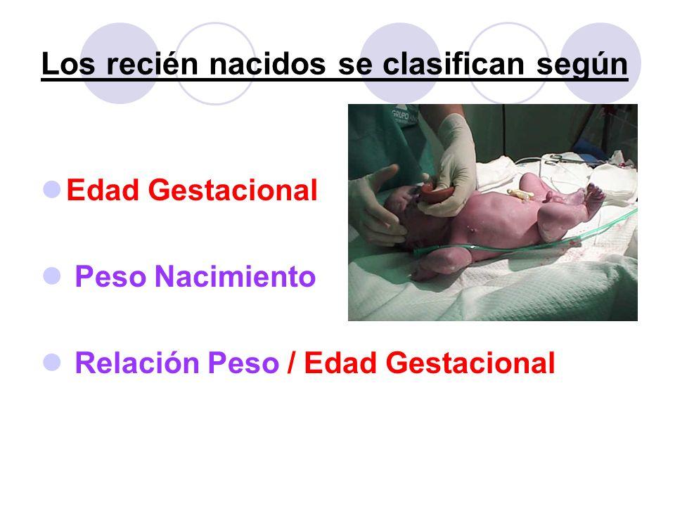 Los recién nacidos se clasifican según Edad Gestacional Peso Nacimiento Relación Peso / Edad Gestacional