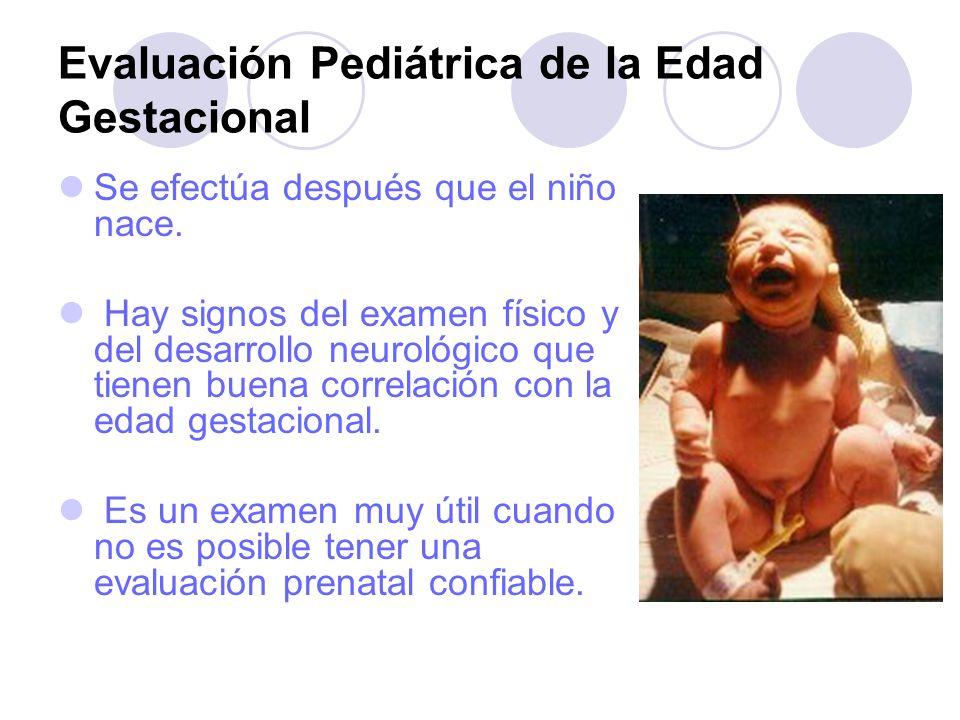 Evaluación Pediátrica de la Edad Gestacional Se efectúa después que el niño nace. Hay signos del examen físico y del desarrollo neurológico que tienen