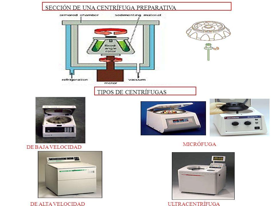 TIPOS DE CENTRÍFUGAS SECCIÓN DE UNA CENTRÍFUGA PREPARATIVA DE BAJA VELOCIDAD MICRÓFUGA DE ALTA VELOCIDADULTRACENTRÍFUGA