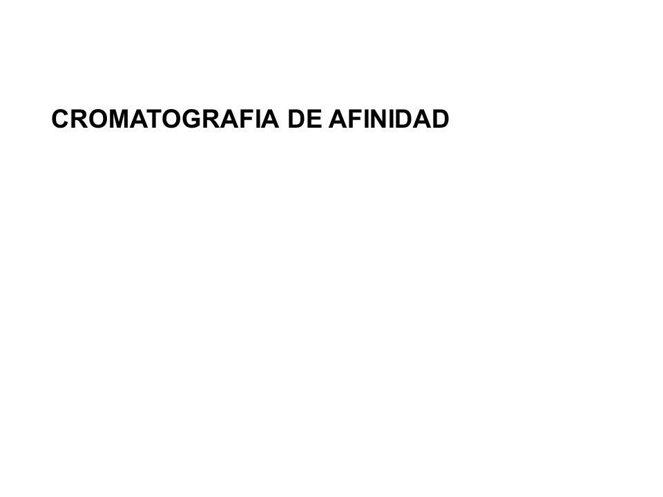 CROMATOGRAFIA DE AFINIDAD