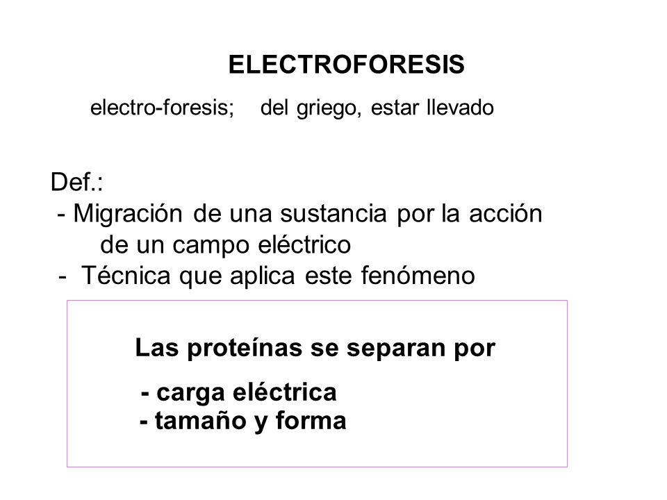 ELECTROFORESIS electro-foresis; del griego, estar llevado Def.: - Migración de una sustancia por la acción de un campo eléctrico - Técnica que aplica