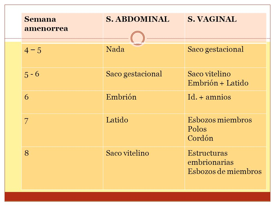 Cronograma de aparición de las distintas estructuras en el saco Semana amenorrea S. ABDOMINALS. VAGINAL 4 – 5NadaSaco gestacional 5 - 6Saco gestaciona