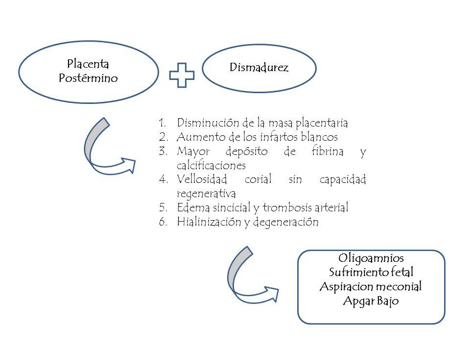 1.Disminución de la masa placentaria 2.Aumento de los infartos blancos 3.Mayor depósito de fibrina y calcificaciones 4.Vellosidad corial sin capacidad