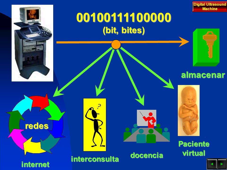 INTRODUCCION El ultrasonido ha sido utilizado desde su introducción con propósitos industriales.