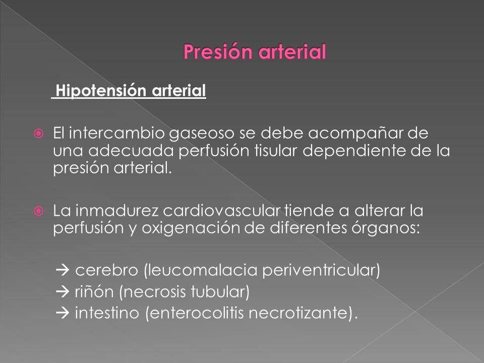 Hipotensión arterial El intercambio gaseoso se debe acompañar de una adecuada perfusión tisular dependiente de la presión arterial. La inmadurez cardi