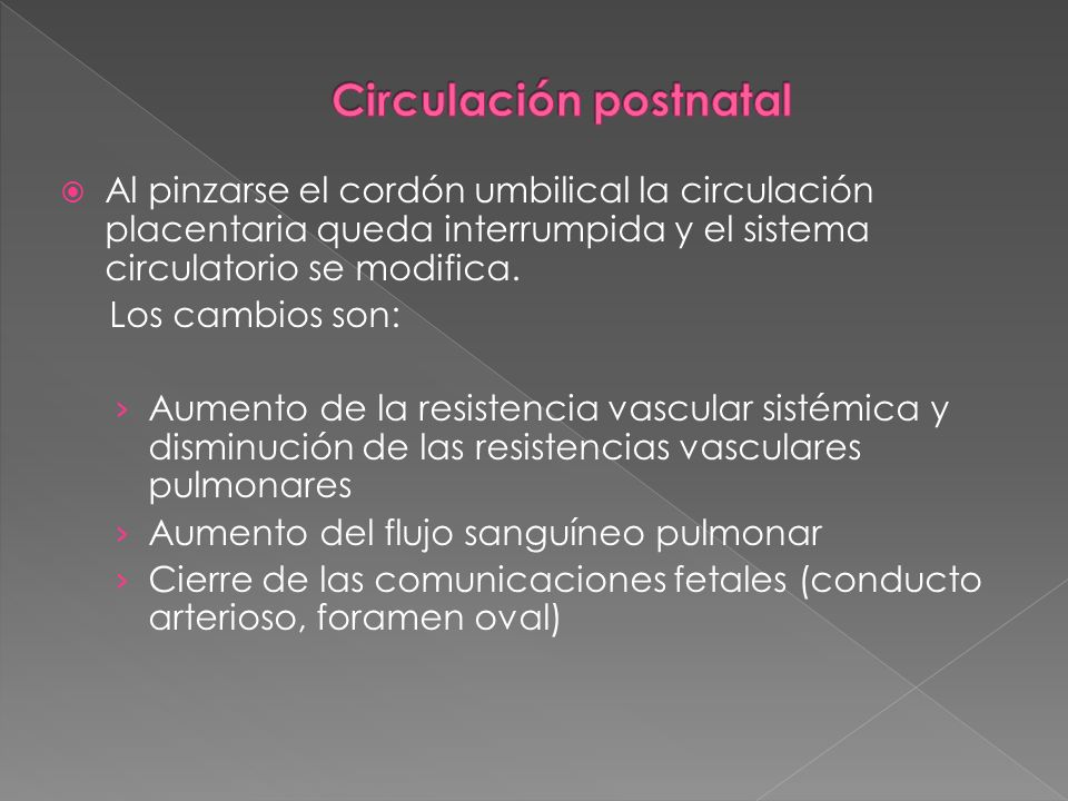 Al pinzarse el cordón umbilical la circulación placentaria queda interrumpida y el sistema circulatorio se modifica. Los cambios son: Aumento de la re