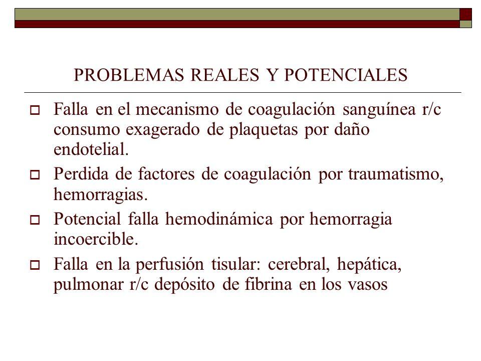 PROBLEMAS REALES Y POTENCIALES Falla en el mecanismo de coagulación sanguínea r/c consumo exagerado de plaquetas por daño endotelial. Perdida de facto