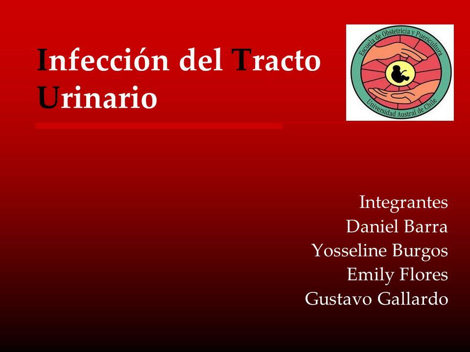 Infección del Tracto Urinario Integrantes Daniel Barra Yosseline Burgos Emily Flores Gustavo Gallardo