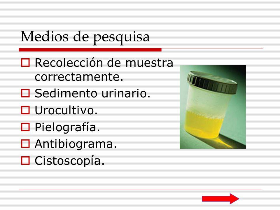 Medios de pesquisa Recolección de muestra correctamente. Sedimento urinario. Urocultivo. Pielografía. Antibiograma. Cistoscopía.