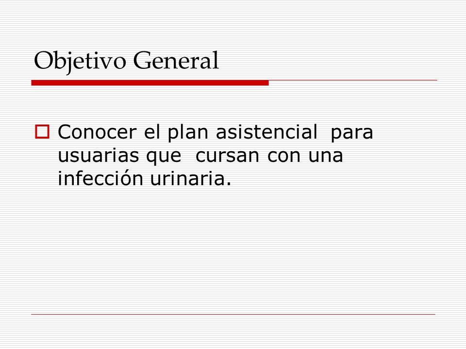 Objetivo General Conocer el plan asistencial para usuarias que cursan con una infección urinaria.