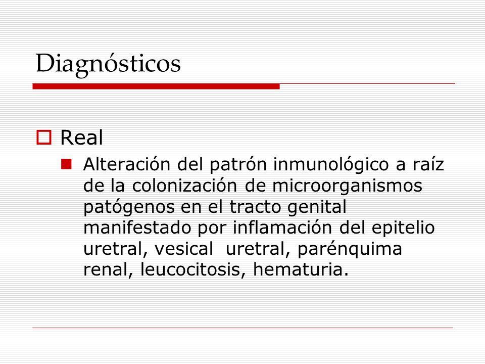 Diagnósticos Real Alteración del patrón inmunológico a raíz de la colonización de microorganismos patógenos en el tracto genital manifestado por infla