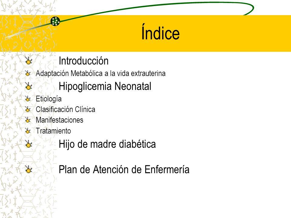 Índice Introducción Adaptación Metabólica a la vida extrauterina Hipoglicemia Neonatal Etiología Clasificación Clínica Manifestaciones Tratamiento Hij