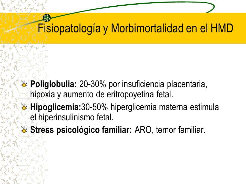 Fisiopatología y Morbimortalidad en el HMD Poliglobulia: 20-30% por insuficiencia placentaria, hipoxia y aumento de eritropoyetina fetal. Hipoglicemia