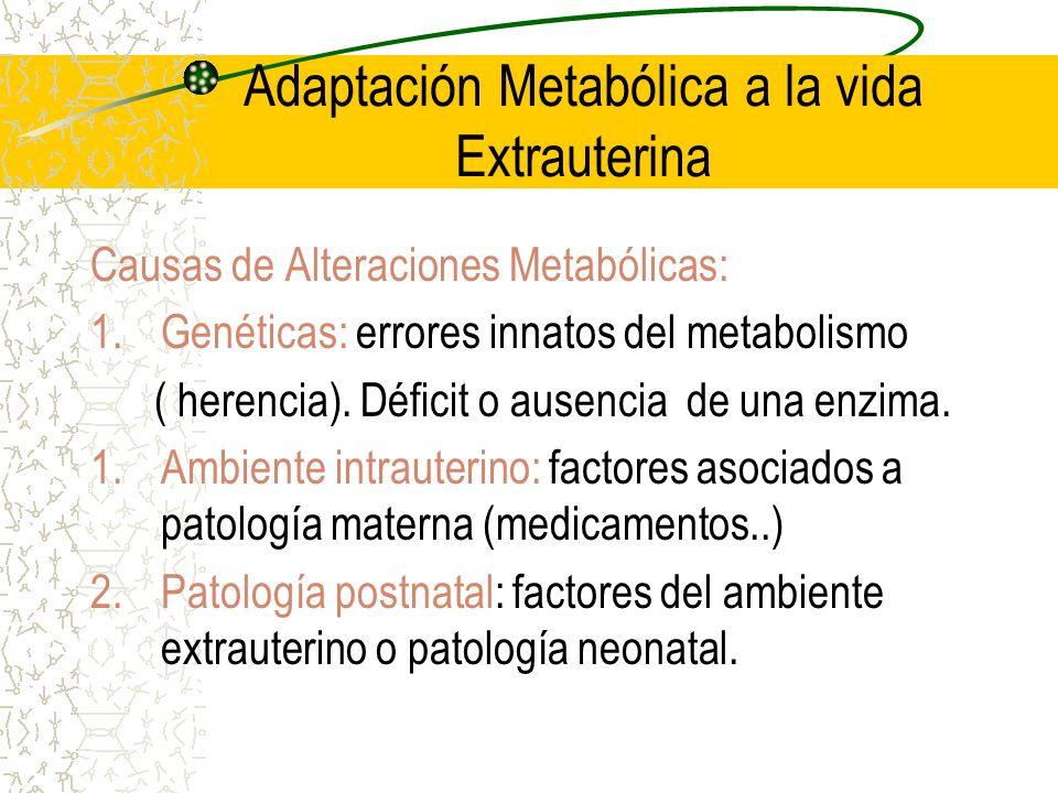 Adaptación Metabólica a la vida Extrauterina Causas de Alteraciones Metabólicas: 1.Genéticas: errores innatos del metabolismo ( herencia). Déficit o a
