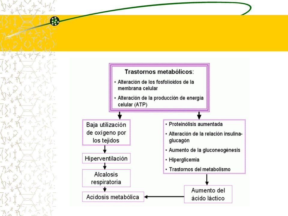 Ayuno Disfunción respiratoria Enfriamiento Septicemia- Infecciones mayores HIC Policitemia Enfermedad Hemolítica severa Factores que contribuyen y/o desencadenan Hipoglicemia Neonatal Transitoria (Cont...)